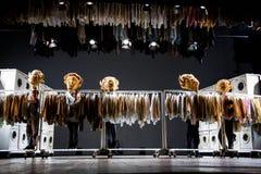 'bizon' obrazy stock