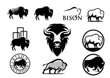 bizon amerykański royalty ilustracja