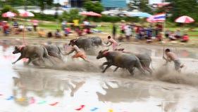 Bizony ściga się kulturę Tajlandia Fotografia Stock