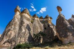 bizzarecappadociaen vaggar kalkonen Arkivbilder