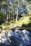 Bjørneparken, Norvège Image libre de droits
