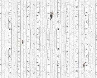 Björk- och hackspetttextur Arkivbilder