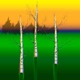 Björk tre på en grön bakgrund Arkivbilder