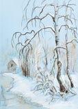 Björkar i vinter Arkivfoton