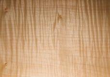 björkbräde royaltyfri foto