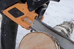 björkchainsawen loan sawing Arkivfoton