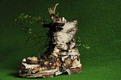 björkeaster sko Royaltyfri Fotografi