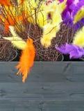 Björkfilialer dekorerade med färgrika fjädrar för påsk Royaltyfri Bild