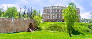Björkträdet i ravin av Tsaritsyno Arkivfoto