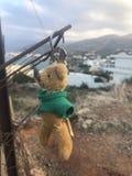 björn förlorad nalle royaltyfria bilder