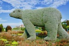 Björn från växter Royaltyfri Bild