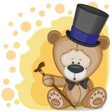 Björn i en hatt Arkivbilder