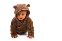 björn little Arkivbild