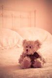 björn little nalle Royaltyfria Foton