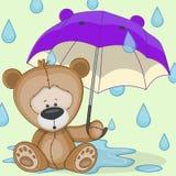 Björn med paraplyet Arkivbilder