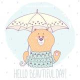 Björn med paraplyet Arkivfoto