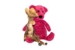 Björn och älg Arkivfoto