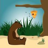 Björn och bikupa stock illustrationer