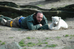 björn polara knut Arkivbild