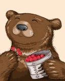 Björn som äter hallon Stock Illustrationer