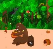 Björn som äter honung Arkivfoto
