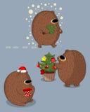 björnar Vektor Illustrationer
