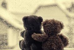 Björnar i förälskelses omfamning som framme sitter av ett fönster royaltyfri foto