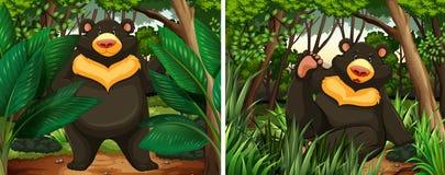 Björnar i skogen vektor illustrationer