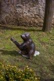 Björnar på min trädgård SÖMN! royaltyfri bild