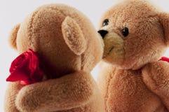 björnar som kysser nalle Fotografering för Bildbyråer