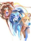 björnar tre Arkivbild
