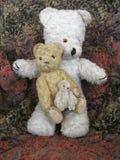 björnar tre Arkivfoto