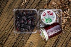 Björnbär med Blackberry driftstopp i flaskor Royaltyfri Foto