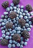 Björnbär och blåbär på en purpurfärgad bakgrund Arkivfoto