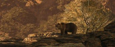björnbrown vektor illustrationer