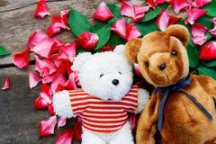 Björndockan för två leksak har att falla som är förälskat med rosa kronbladbakgrund royaltyfri bild