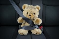 Björnen för flickaprinsessanallen sitter i en bil med en tiara royaltyfri foto