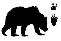 björnen isolerade powtrycksilhouetten Arkivfoto