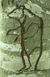 Björnen sned in i ett träd Arkivfoto