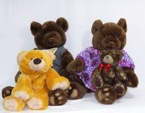 björnfamilj Fotografering för Bildbyråer