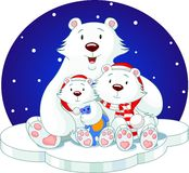 björnfamilj Royaltyfri Fotografi