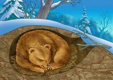 björnhåla stock illustrationer