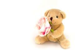 Björnhåll en rosa färgros för en årsdag eller en valentinberöm Arkivbilder