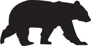 Björnkontur royaltyfri foto