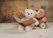 Björnleksakinnehav och läsning en bok Arkivbild