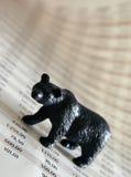 björnmarknad royaltyfria foton