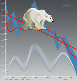 björnmarknad royaltyfri foto