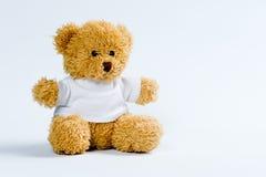 björnnalle Fotografering för Bildbyråer