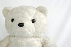 björnnalle Arkivbild
