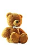 björnnalle Royaltyfri Bild